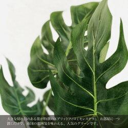 スプリットフィロ(SC触媒加工済み)【CT触媒】【人工樹木】【造花】