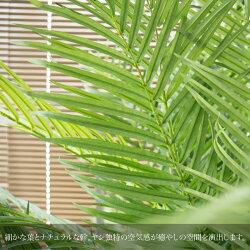【送料無料】フェイクグリーンアレカパーム140cmM陶器鉢付アレカヤシ鉢植【光触媒CT触媒インテリア人工観葉植物造花ArecaPalm】