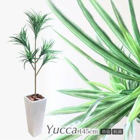 人工観葉植物 フェイクグリーン 観葉植物 造花 光触媒 大型 ユッカツリー(青年の木) 5本枝 145cm 鉢植 インテリア おしゃれ フェイク グリーン CT触媒 消臭 お祝い