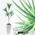 人工観葉植物フェイクグリーン観葉植物造花光触媒大型ユッカツリー(青年の木)5本枝145cm鉢植インテリアおしゃれフェイクグリーンCT触媒消臭抗菌お祝い