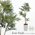 人工観葉植物フェイクグリーン観葉植物造花光触媒大型エバーフレッシュ175cm鉢植ネムノキエバーグリーンインテリアおしゃれフェイクグリーンCT触媒消臭抗菌お祝い