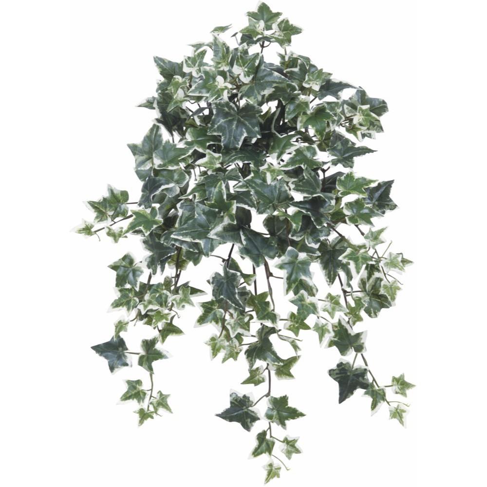 【人工観葉植物】セージアイビー(斑入り) 52cm ブッシュ 【フェイクグリーン 観葉植物 造花 光触媒 CT触媒 インテリア】【楽ギフ_