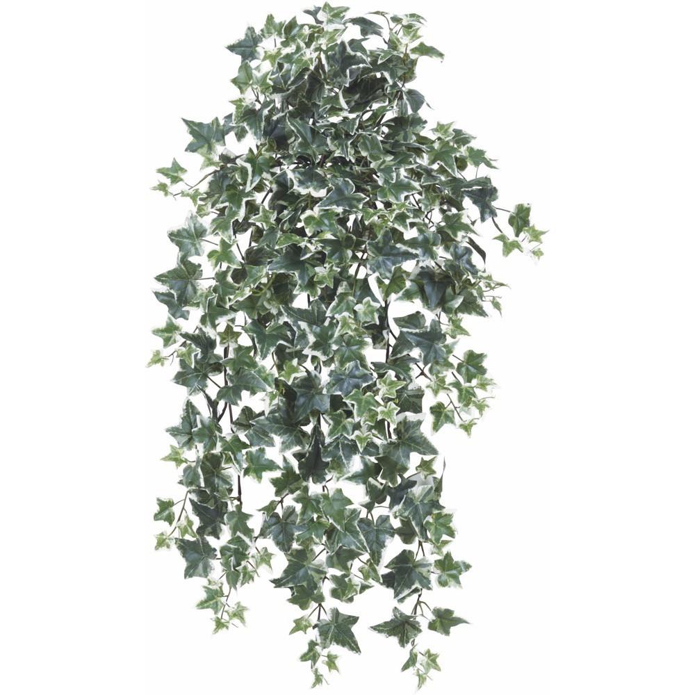 【人工観葉植物】セージアイビーハンギング(斑入り) 76cm ブッシュ 吊るす 【フェイクグリーン 観葉植物 造花 光触媒 CT触媒 インテリア】【楽ギフ_