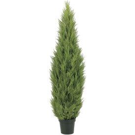 【観葉植物 造花 大型】屋外対応 ゴールドクレスト 180cm 樹木 【人工観葉植物 フェイクグリーン 光触媒 CT触媒 インテリア】