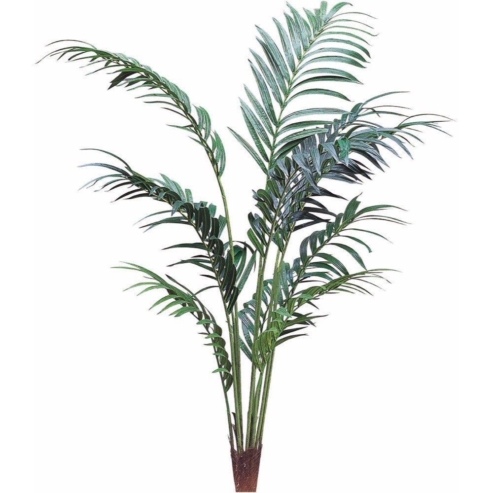 【観葉植物 造花 大型】ケンチャパーム 240cm ケンチャヤシ 樹木 【フェイクグリーン 人工観葉植物 光触媒 CT触媒 インテリア】