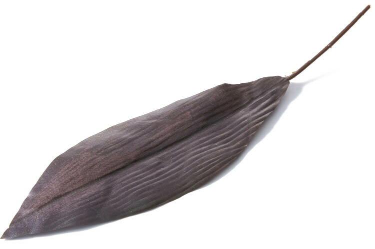ドラセナリーフ 6P ブラック