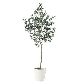 【人工観葉植物 大型】 ブラックオリーブ FST 180cm 鉢植 【観葉植物 造花 フェイクグリーン 光触媒 CT触媒 インテリア】
