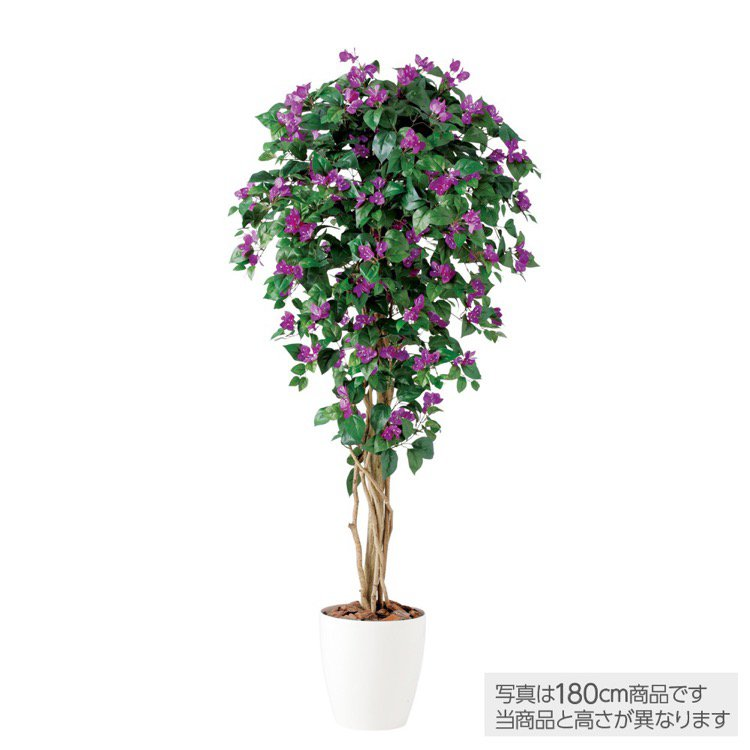 【人工観葉植物 大型】 ブーゲンビレアリアナ (ブーゲンビリア) 200cm 【観葉植物 造花 フェイクグリーン 光触媒 CT触媒 インテリア】