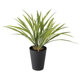 【フェイクグリーン】 アオオリヅルラン 40cm 【人工観葉植物 観葉植物 造花 光触媒 CT触媒 インテリア】