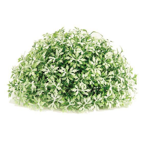 【フェイクグリーン】 ハーフボール スノーメープル 【観葉植物 造花 人工観葉植物 光触媒 CT触媒 インテリア】