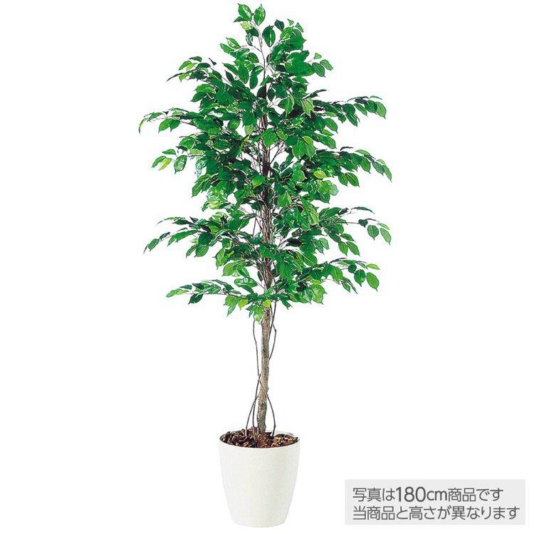 【人工観葉植物】 フィッカスベンジャミナ (ベンジャミン) 150cm 【フェイクグリーン 大型 観葉植物 造花 光触媒 CT触媒 インテリア】【送料無料】