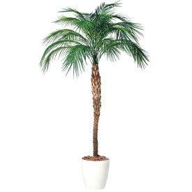 【人工観葉植物 大型】 フェニックス・ロベレニー (パーム) 200〜300cm 鉢植 【観葉植物 造花 フェイクグリーン インテリア】