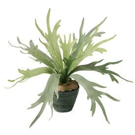 【フェイクグリーン】 コウモリラン 50cm 鉢植 【観葉植物 造花 人工観葉植物 光触媒 CT触媒 インテリア】