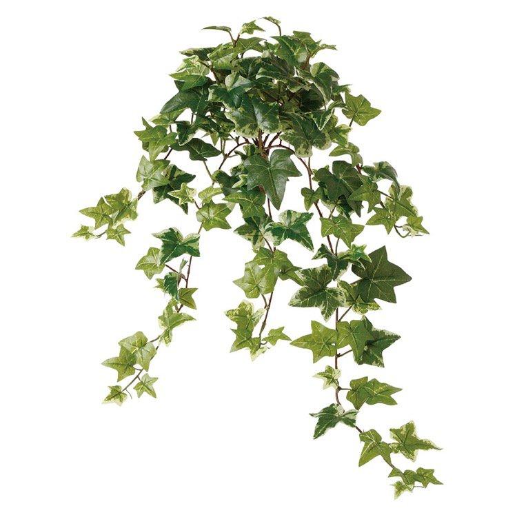 【人工観葉植物】 セージアイビー 60cm 【フェイクグリーン 観葉植物 造花 光触媒 CT触媒 インテリア】