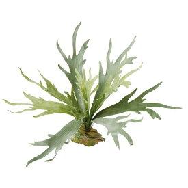 【人工観葉植物】 コウモリラン 50cm 【フェイクグリーン 観葉植物 造花 光触媒 CT触媒 インテリア】