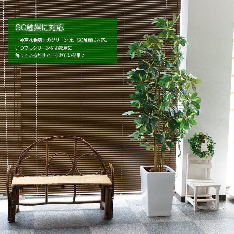 フェイクグリーン 大型 ナチュラル カポック(シェフレラ)斑入り 180cm 鉢植 人工観葉植物 造花 光触媒 CT触媒 インテリア