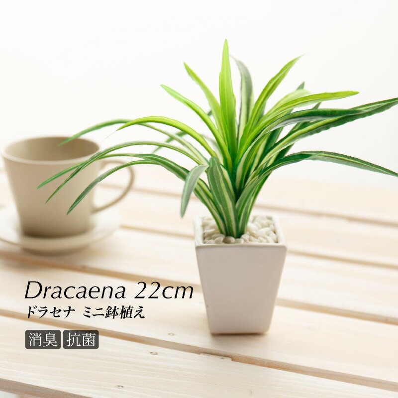 【観葉植物 造花】ドラセナ鉢植22cm(光触媒より優れたCT触媒/SC触媒/インテリア/お祝い)【フェイクグリーン 観葉植物 人工】