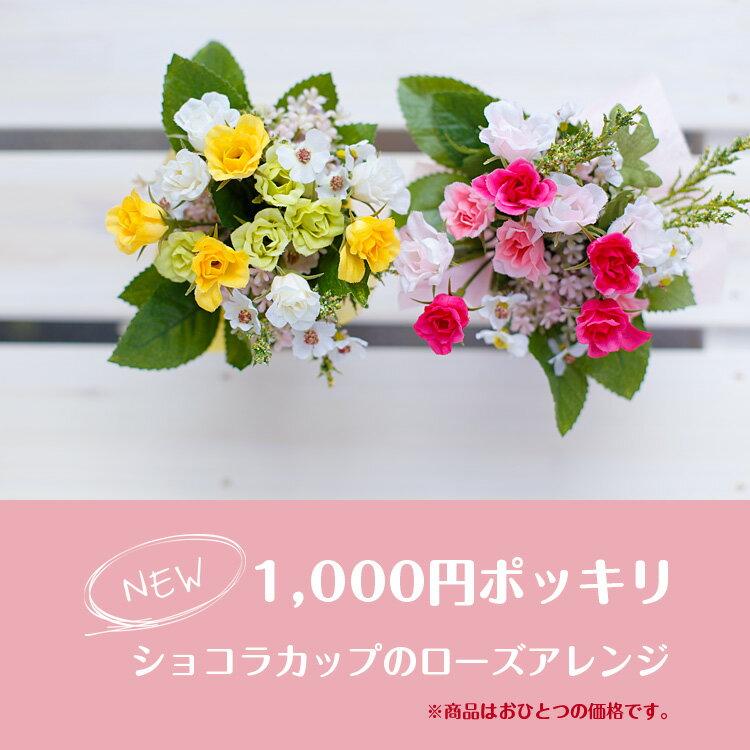 送料無料 1000円ポッキリ ショコラカップのローズアレンジメント ギフト プレゼント 玄関 母の日