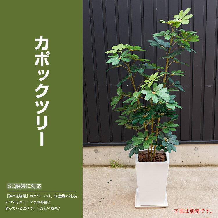 観葉植物 造花 ナチュラル カポックツリー 160cm(シェフレラ)(光触媒より優れたSC/CT触媒 インテリア お祝い)【フェイクグリーン 人工観葉植物】