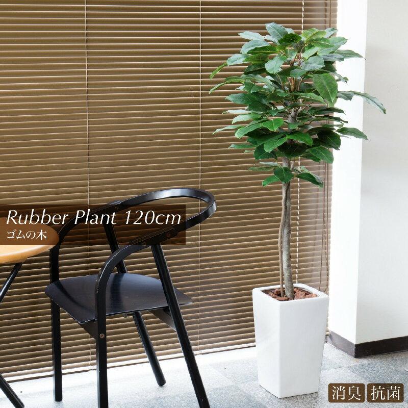 【観葉植物 造花】ゴムの木(120cm)ラバープラント鉢植【フェイクグリーン 大型 樹木 SC/CT触媒・光触媒/インテリア/お祝い】