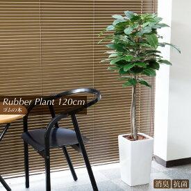 人工観葉植物 フェイクグリーン 観葉植物 造花 光触媒 大型 ゴムの木(120cm)ラバープラント鉢植 インテリア おしゃれ フェイク グリーン CT触媒 消臭 抗菌 お祝い