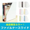 【特価】 【ステーショナリー】 限定カラー ステイト ファイルケースワイド 【日本製】