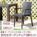 【送料無料】 【ガーデニング】 ガーデン肘付チェア 2脚セット【ステラ-STELLA-】(ガーデン カフェ)
