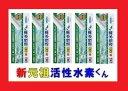 新 元祖活性水素くん【5本セット】【水素スティック】【水素水】【TKN50】【当店ロングヒット商品】