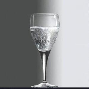 シャンパン ワイン グラス/ フィオーレ 240cc /レストラン バー 業務用 ガラス 家庭用 お酒 ジュース パーティー おもてなし おしゃれ