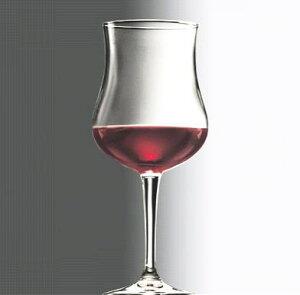 シャンパン ワイン グラス/ リゼルバ 560cc /レストラン バー 業務用 ガラス 家庭用 お酒 ジュース パーティー おもてなし おしゃれ