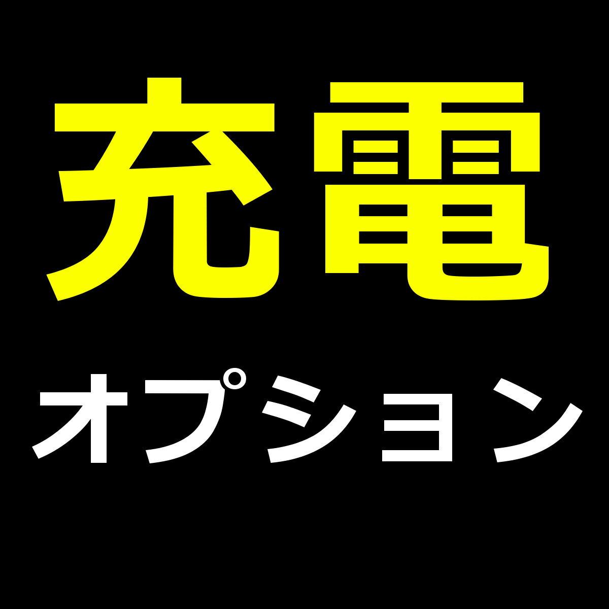 【スーパーSALE半額以下】充電オプション600円 充電式リチウムイオン電池×2/充電ケーブル×1/