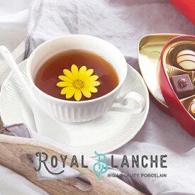 【Royal Blanche】 ティーカップ&ソーサー 200cc 日本製 美濃焼 陶器 白磁 白い食器 洋食器 軽量 しのぎ カップアンドソーサー 紅茶カップ コーヒーカップ お皿 プレート カフェ風 アンティーク シンプル ポーセリンアート 北欧