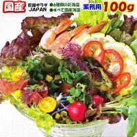 海藻サラダJAPAN20g【国産】
