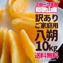 八朔 はっさく 訳あり ご家庭用 10kg 送料無料【予約 12月上旬以降】