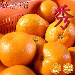 みかん 秀品 5kg 和歌山県産 温州みかん 産地直送 送料無料