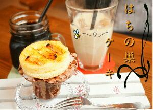 honobonoスイート♪はちのすケーキ【冷凍発送】お菓子 おかし 焼き菓子 焼菓子 洋菓子 手作りケーキ マーブルケーキ カップケーキ おもしろ 面白い おもしろい ユニーク 虫 昆虫 手づくり サ