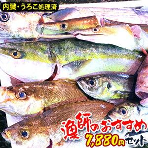 【漁師激選】鮮魚 直送 鮮魚 詰め合わせ 鮮魚ボックス 魚 詰め合わせ 鮮魚 おまかせ 福袋 刺身 さしみ 取り寄せ お取り寄せ 鮮魚 直送 鮮魚セット 送料無料 おいしい 海鮮 詰め合わせ 美味し