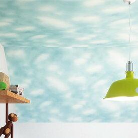 【 壁紙 のりなし 】 壁紙 のりなし クロス 天井 空 雲 防かび サンゲツ FE-1300