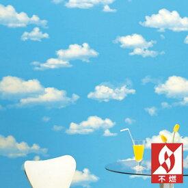 【 壁紙 のり付き 】 壁紙 のりつき クロス カジュアル 空 雲 表面強化 防かび サンゲツ FE-1351