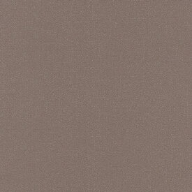 輸入壁紙の切り売り(横巾53cm×1m単位で切売)rasch ラッシュ Sparkling  898262【国内在庫】