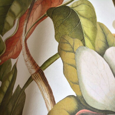 Mind the Gap / マインド・ザ・ギャップ Magnolia Taupe WP20152