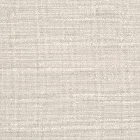 【 壁紙 のり付き 】生のり付き 壁紙 (クロス)/グレー・灰色の壁紙 SSG-5190