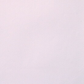 【 壁紙 のり付き 】生のり付き 壁紙 (クロス)/パープル・紫色の壁紙 SBB-8277