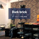 Rknk-f-dark-ren-sh1