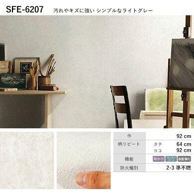 SFE-6207