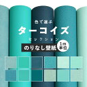 T color nashi sh