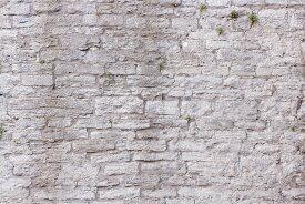 アートパネル 10cm単位でサイズオーダーできる 絵画 壁掛け インテリア 壁飾り キャンバス アート ウォール フェイク だまし絵 石 岩 e23092