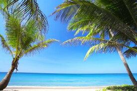 風景 景色 トロピカル 砂浜 リゾートの壁紙輸入 カスタム壁紙 PHOTOWALL / Relaxation (e19904)貼ってはがせるフリース壁紙(不織布)【海外取り寄せのため1カ月程度でお届け】【代引き不可】