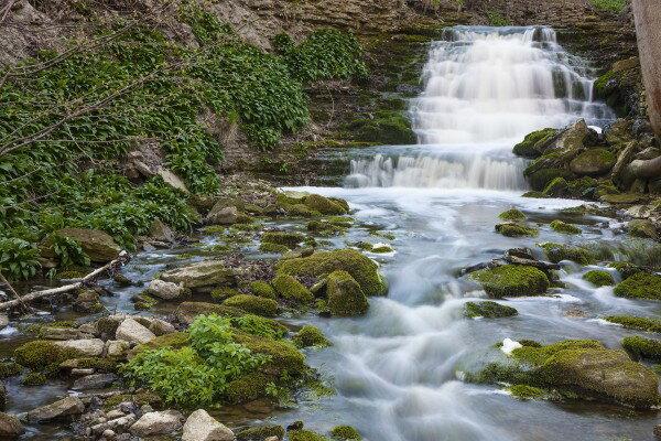 自然 滝の壁紙輸入 カスタム壁紙 PHOTOWALL / Stream, Gotland (e23076)貼ってはがせるフリース壁紙(不織布)【海外取り寄せのため1カ月程度でお届け】【代引き不可】.