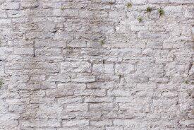 フェイク だまし絵 石 岩の壁紙 輸入 カスタム壁紙 PHOTOWALL / Ruin Wall (e23092) 貼ってはがせるフリース壁紙(不織布) 【海外取り寄せのため1カ月程度でお届け】 【代引き不可】